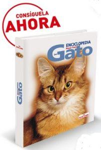 enciclopedia del gato de Royal Canin gratis